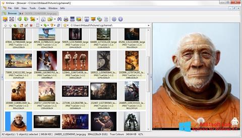 Скріншот XnView для Windows 8.1