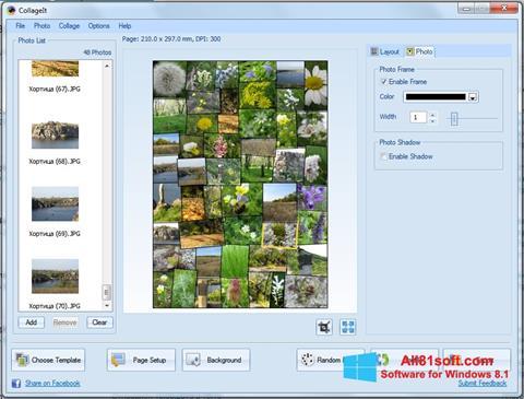 Скріншот CollageIt для Windows 8.1