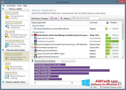 Скріншот Reg Organizer для Windows 8.1
