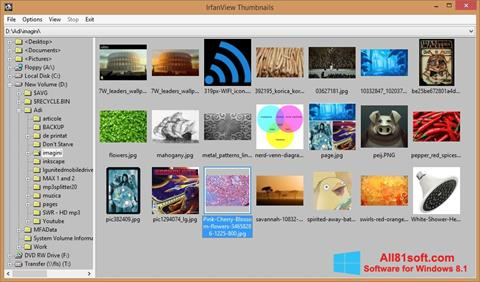 Скріншот IrfanView для Windows 8.1