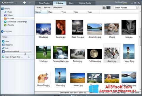 Скріншот RealPlayer для Windows 8.1